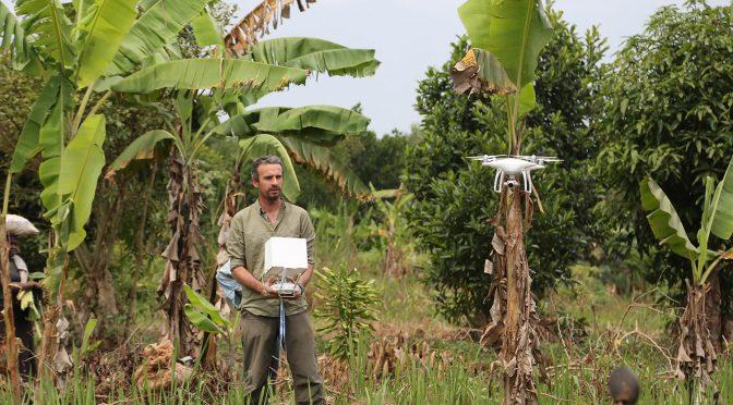 L'intelligence artificielle et les drones en protection des animaux